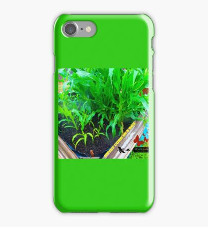 SWEET CORN iPhone Case/Skin