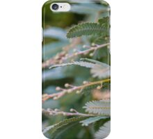Young Wattle iPhone Case/Skin