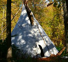 Hidden Tipi by Madeline M  Allen