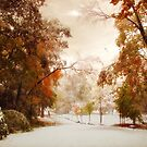 Autumn Meets Winter by Jessica Jenney
