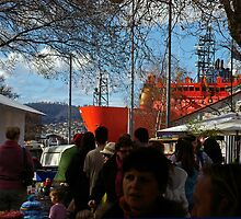 The Aurora Australis at the Salamanca Market in Hobart by Paul Gilbert