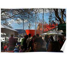 The Aurora Australis at the Salamanca Market in Hobart Poster