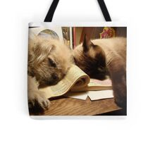 BOOKENDS Tote Bag