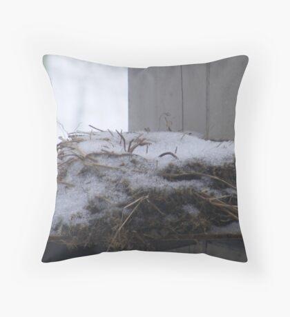 winters nest Throw Pillow