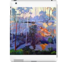 Late afternoon rocks iPad Case/Skin