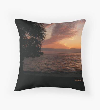 Last Sunset of 2007/1 Throw Pillow