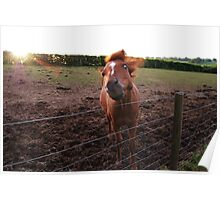 The horse that said neigh Poster