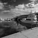 Marina Mirage, Southport, Gold Coast, Queensland, Australia. by Ralph de Zilva