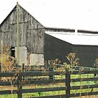 Black Barn by ahedges