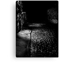 The lane into unknown Canvas Print
