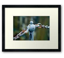 link Framed Print