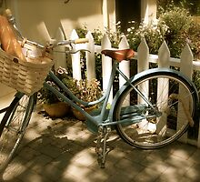French Bicycle by Blair Akers