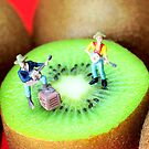 Band Show On Kiwi Fruits by Paul Ge