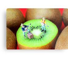 Band Show On Kiwi Fruits Metal Print