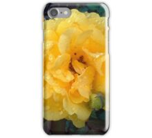 YELLOW ROSE AND RAINDROPS iPhone Case/Skin