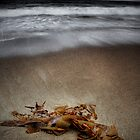 Blackmans Bay Beach by Kye Vincent