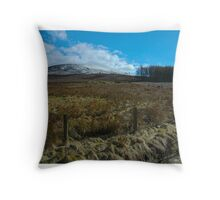 Black Hambleton Throw Pillow