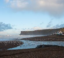 Birds at High Tide by Michael Stubbs