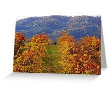 october vineyard Greeting Card