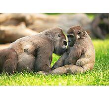 Mammal Maternal Love Photographic Print