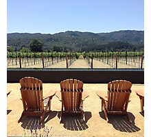 Wine Sipping and Sitting Photographic Print