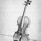 Violin in Black and White by Kadwell
