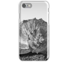 Conch Life iPhone Case/Skin
