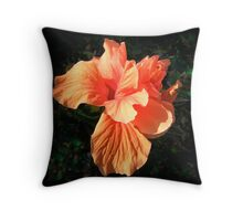 Peach Parfait Throw Pillow