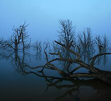 Lake Eucumbene by Graham Schofield