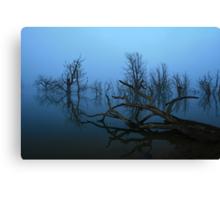 Lake Eucumbene Canvas Print