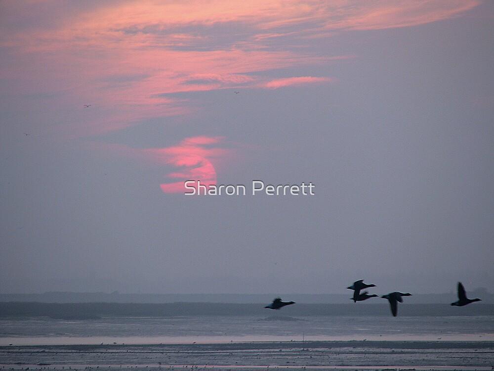 Sunset 1 21-12-07 by Sharon Perrett