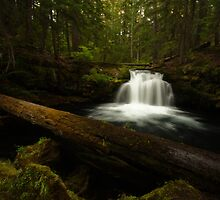 Whitehorse Falls- The road to Crater Lake by Coniferous