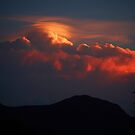 Sunset Pileus by Julie Just