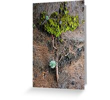 Earth Art Greeting Card