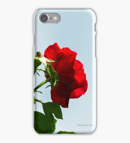 Red Roses | Old Westbury Gardens, New York  iPhone Case/Skin