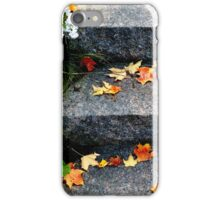 Stone Stairs in Autumn iPhone Case/Skin