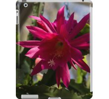 Vivacious Christmas Cactus Bloom iPad Case/Skin