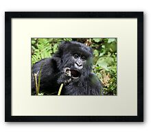 Just Got To Pick My Tooth!!!! Framed Print