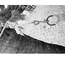 Hammock Detail Photographic Print