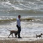MAN WALKING HIS DOGS by Deirdre Banda