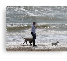 MAN WALKING HIS DOGS Metal Print