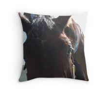 The Look of Trust Throw Pillow
