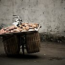 A bike load of potatoes by Matthew Bonnington