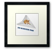 Fighter Hamster Framed Print