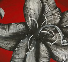 White Flower  by Samantha Churchill
