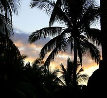 Sunset in Mauritius by Hermien Pellissier