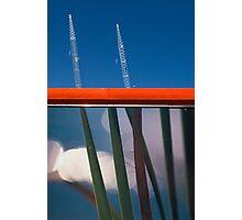 Grass Cranes Photographic Print