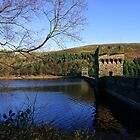 Derwent Dam by Stephen Smith
