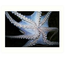Suction Cups. Art Print