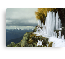 Icicles - Lady Northcotes Canyon Canvas Print